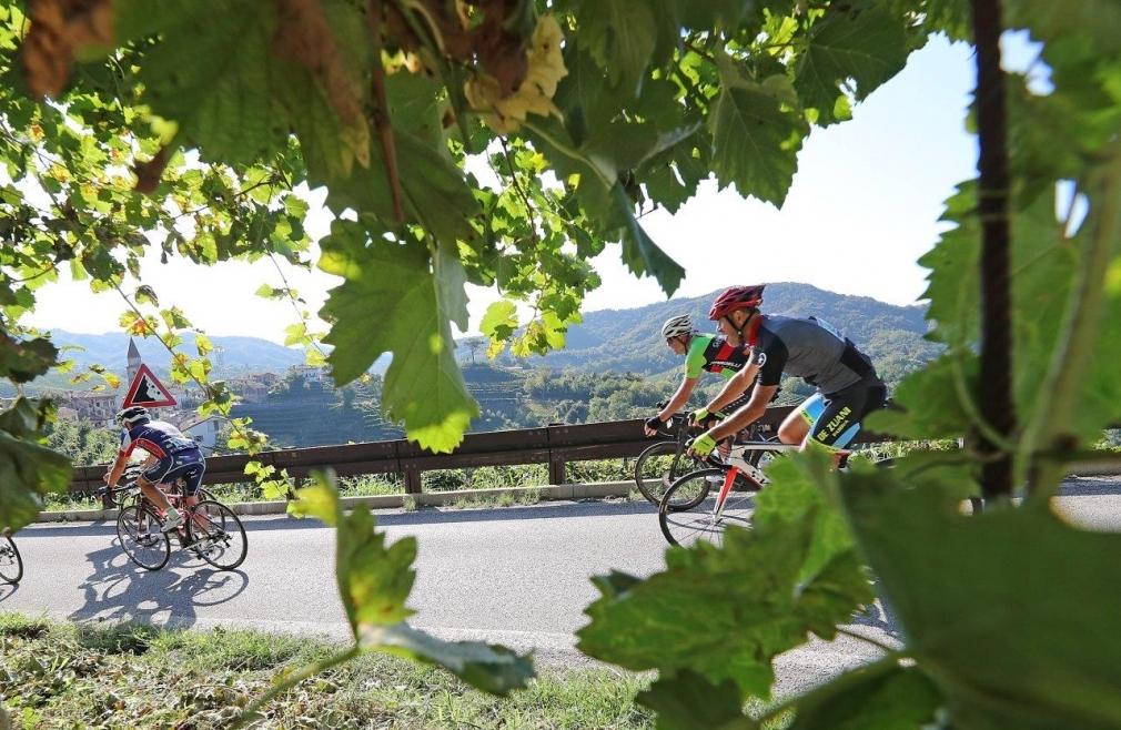 prosecco cycling vigne vino veneto
