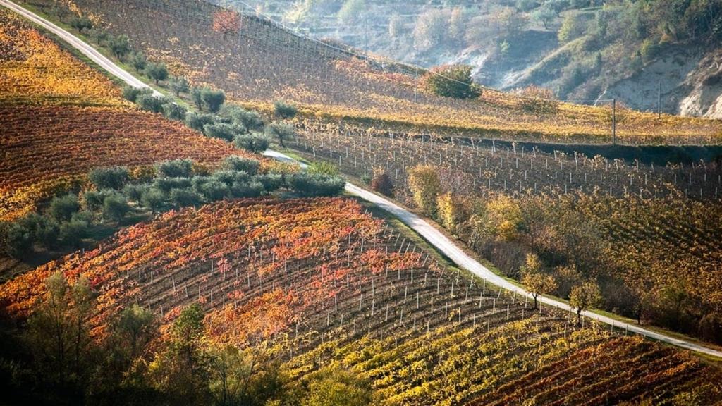 itinerari in bicicletta nelle Marche