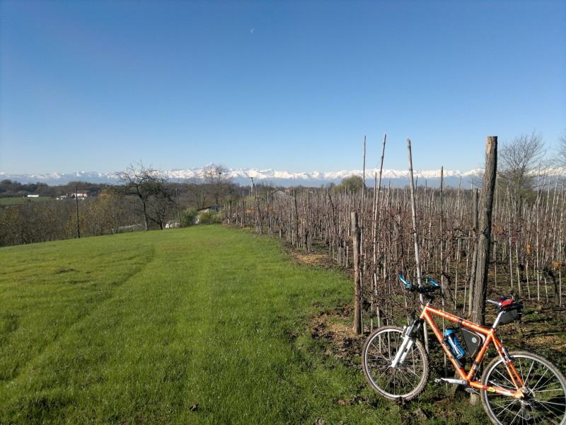 roero cicloturismo vigne
